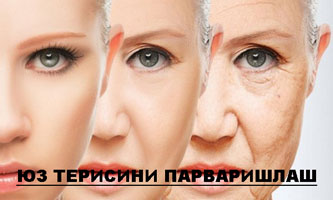 ЮЗ ТЕРИСИНИ ПАРВАРИШЛАШ
